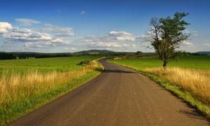 蓝天道路旁的草地风光摄影高清图片