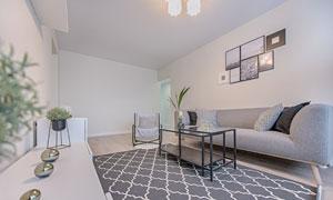 房间装饰画与沙发家具摆放高清图片
