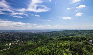 蓝天白云树丛自然风光摄影五百万彩票图片