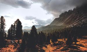 天空乌云与山脚之下的树林高清图片