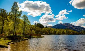 湖畔树丛大山自然风光摄影高清图片