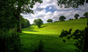 白云与绿意盎然的农场摄影高清图片