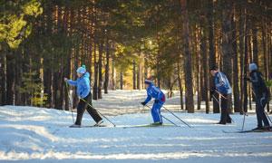 树林中的滑雪运动人物摄影高清图片