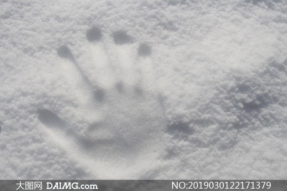在雪地上的手掌印特写摄影高清图片
