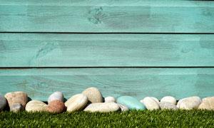 在草地上的鹅卵石近景特写高清图片