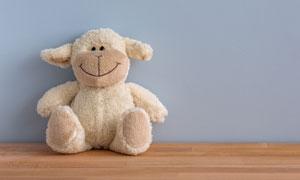 靠墙放着的玩具熊特写摄影高清图片