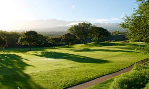 远山与高尔夫球场风景摄影高清图片