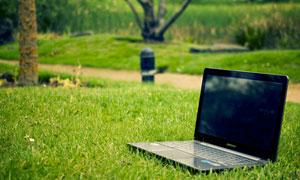 在草坪上的笔记本电脑摄影高清图片