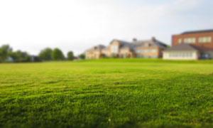 在房子前面的大片草坪摄影高清图片