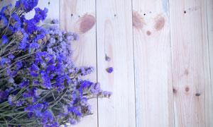 木板上的鲜艳干花特写摄影高清图片