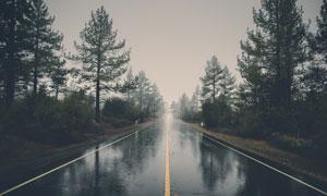 下雨天气公路树木风光摄影高清图片