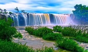树木草丛瀑布自然风景摄影高清图片