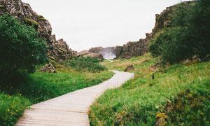 山丘树丛与山间的小路摄影高清图片