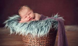 編織筐里的粉嫩小寶寶攝影高清圖片
