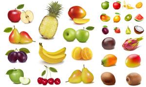 苹果菠萝与芒果等水果主题矢量素材