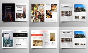 美食与商务等用途画册内页矢量素材