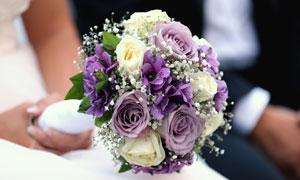 搭配有满天星的玫瑰花摄影高清图片