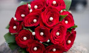 珍珠点缀的红玫瑰花束摄影高清图片