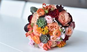 搭配了多肉的鲜花花束摄影高清图片