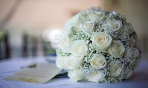 满天星与白色玫瑰花束摄影高清图片