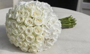 多束白玫瑰扎成的捧花摄影高清图片