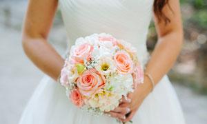 双手中的玫瑰鲜花特写摄影高清图片