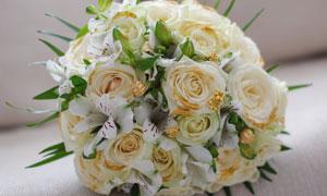 放在沙发上的白色花束摄影高清图片