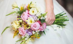 新娘手中多支鲜花特写摄影高清图片