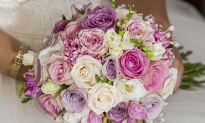 双手中的多种颜色玫瑰捧花高清图片