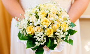 白色小花点缀的黄玫瑰摄影高清图片