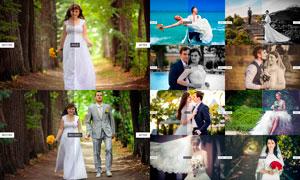 Presetual系列婚礼随拍后期调色LR预设V2