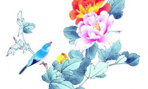 花卉植物上的蓝色小鸟绘画高清图片