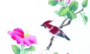 枝头上的花朵小鸟绘画创意高清图片
