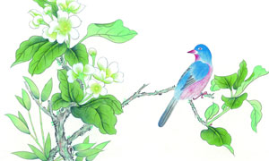绿叶枝头上的小鸟绘画创意高清图片