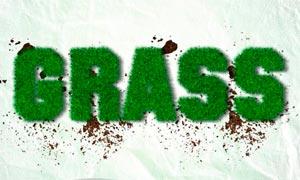 中文版绿色草丛艺术字设计PS动作