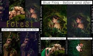 中文版森林照片复古主题效果PS动作