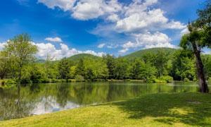 蓝天白云与湖边的树木草地高清图片