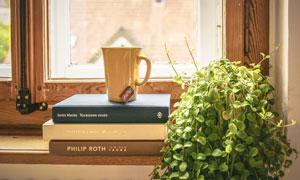 书籍杯子与绿色植物等摄影高清图片