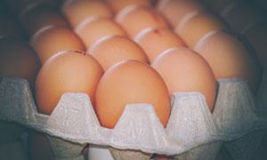 日常生活中摆放整齐的鸡蛋高清图片