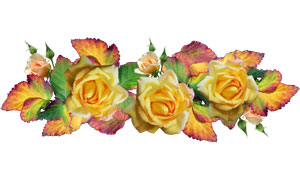 黄色的玫瑰花主题免抠设计高清图片
