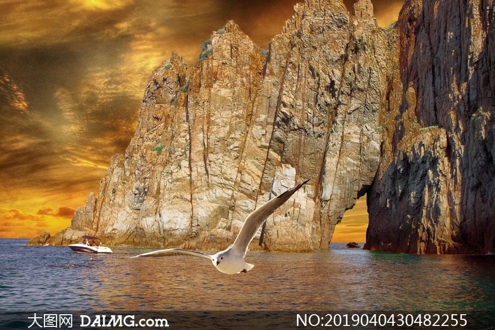 险峻高山与飞翔的海鸥摄影高清图片