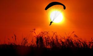 黄昏草丛与降落伞人物剪影五百万彩票图片