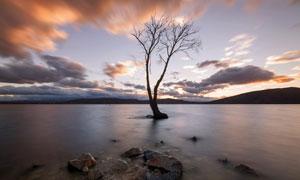 黄昏云彩湖水小树风光摄影高清图片