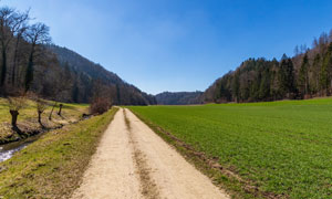 大山树丛农田小路风光摄影高清图片