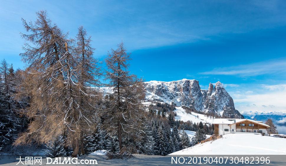 蓝天山丘树木房子风景摄影高清图片
