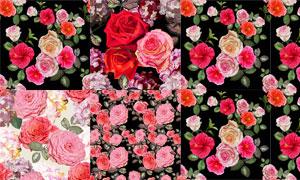 逼真效果的玫瑰花无缝背景矢量素材