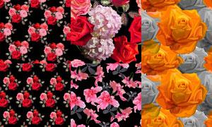 鲜艳玫瑰花朵主题无缝拼接矢量素材