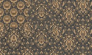 欧式复古风格金色花纹图案矢量素材