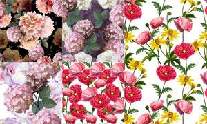 质感花卉植物无缝平铺背景矢量素材