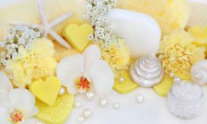 珍珠花朵与海绵擦特写摄影高清图片